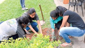 Importance of youth engagement - planting food